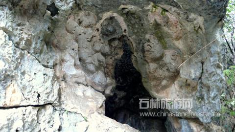 岩石上为什么会有一些空洞?