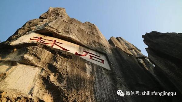 云南石林:跨越3亿年的地质演化史诗