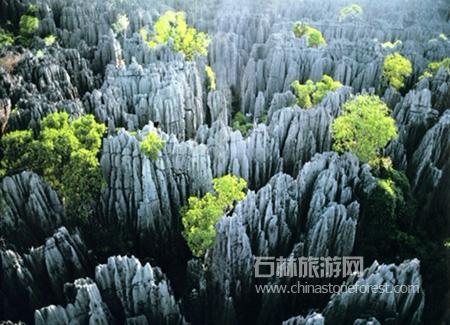 世界上类似的石林地貌