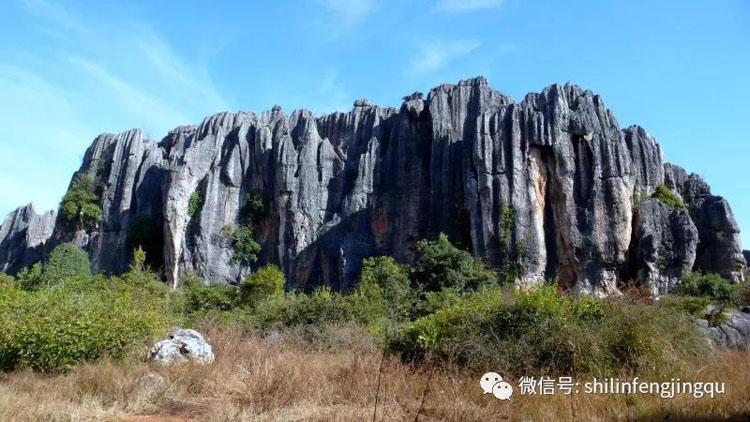 """被稱為""""世界喀斯特地貌的精華"""",雲南石林到底有多特別?"""